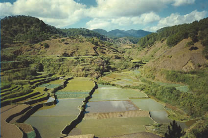rice_terraces_sagada